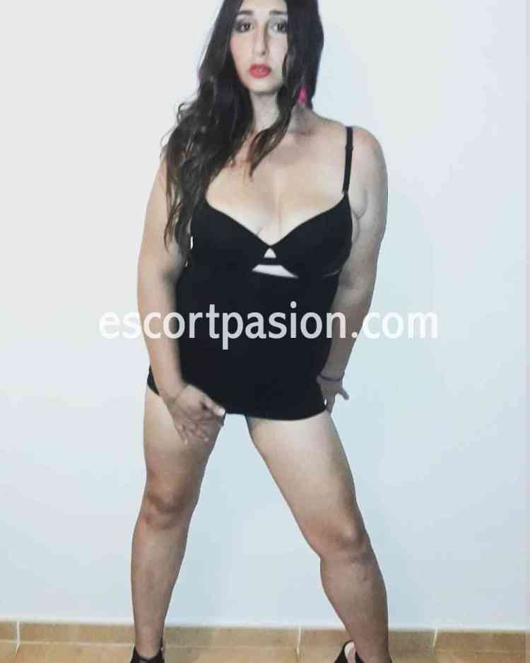 trans transexual transgenero travesti transex escort sirena