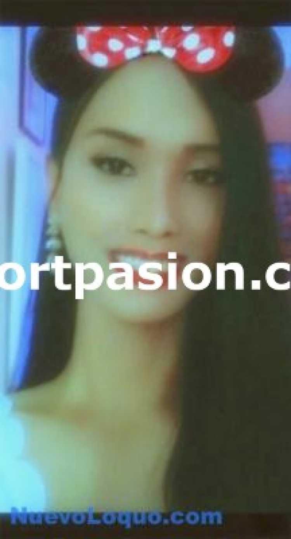 kattoy - LADYBOY ASIATICA THAILANDIA