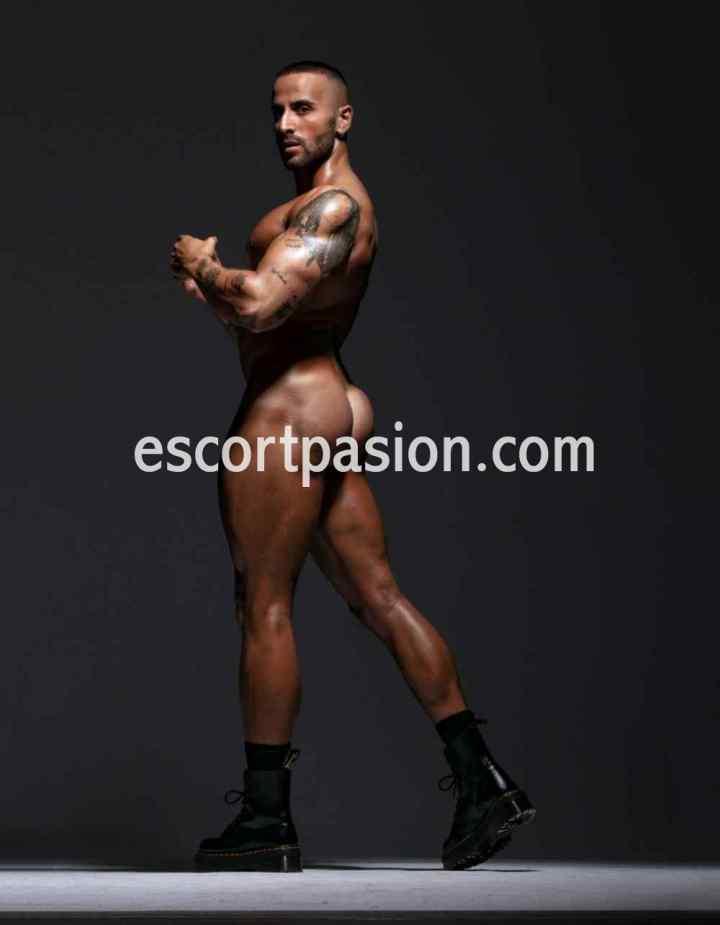 gigolos en Madrid de cuerpos musculosos y bien cuidados te revientan en la cama