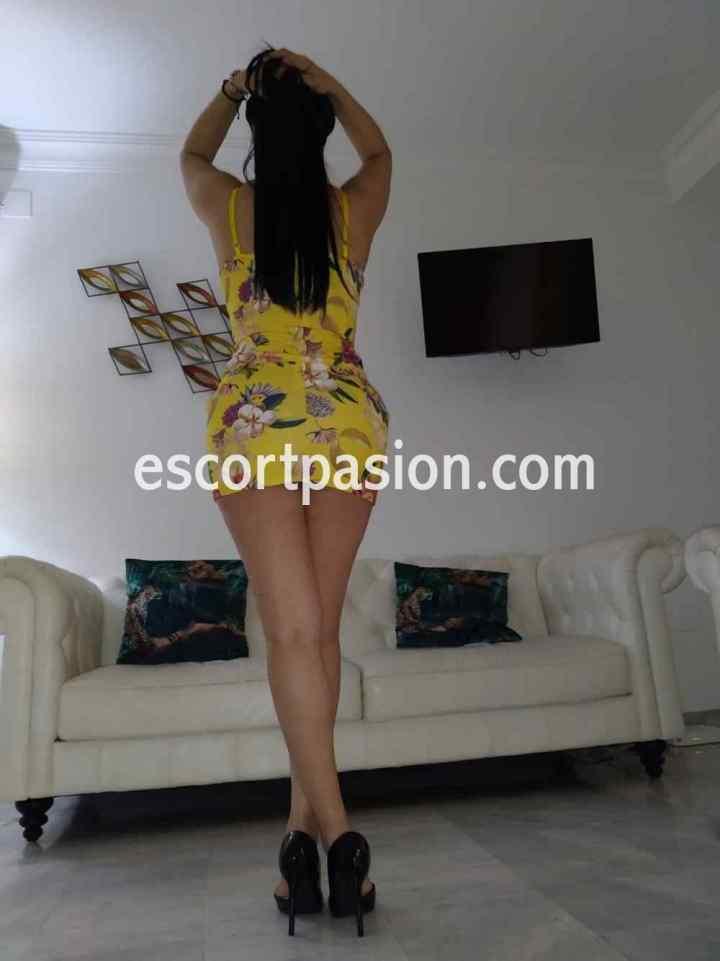 putas Colombianas con experienciencia en el sexo pueden cumplir todas tus fantasías y fetiches